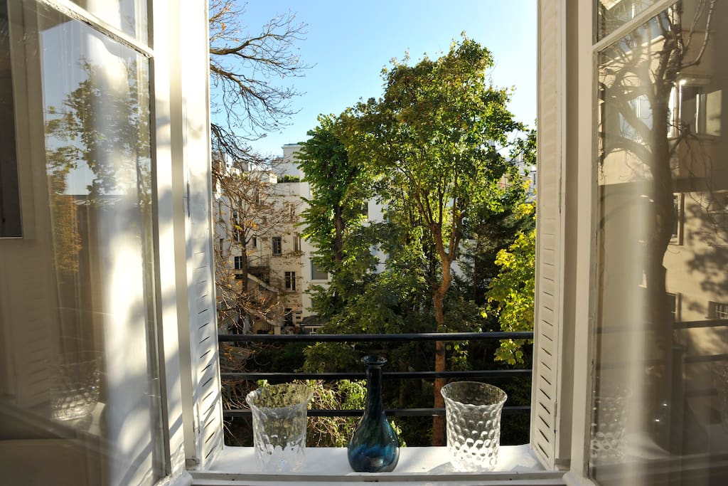Fenêtre du salon donnant sur les petits jardins des hôtels particuliers de la rue du Belvédères.