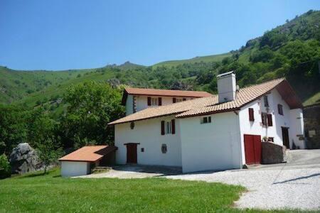 Grande maison avec plage privée - Ossès