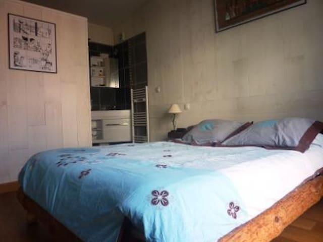 Independent room, garden view - Villemomble - Bed & Breakfast