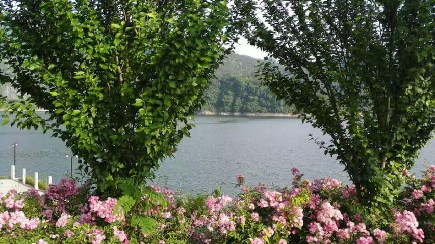 千岛湖源头 黄金旅游线上的靓点 - Hangzhou - House