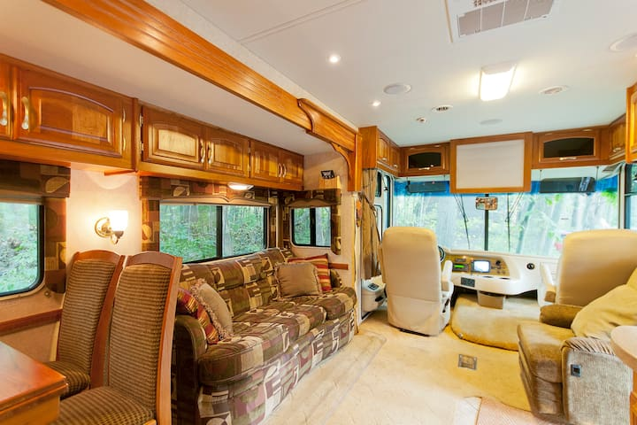 Beautiful 40 foot Luxura MotorHome - Pinckney