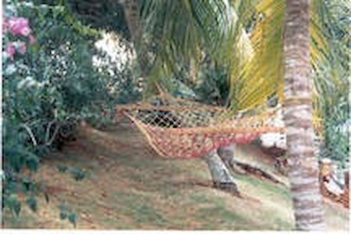 Relax Spot with Hammock