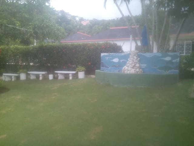 Section of the lawn with fountain and seats