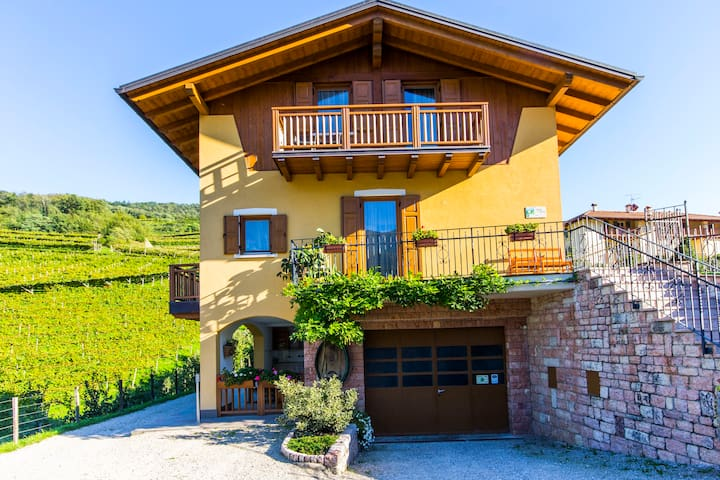 double in Farmhouse for wine lovers - Nave San Felice - Penzion (B&B)