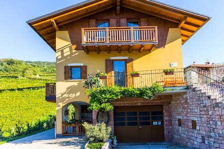 double in Farmhouse for wine lovers - Nave San Felice