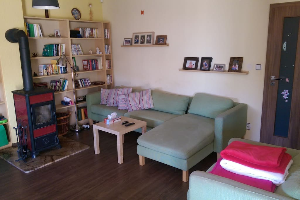 Opened plan living room