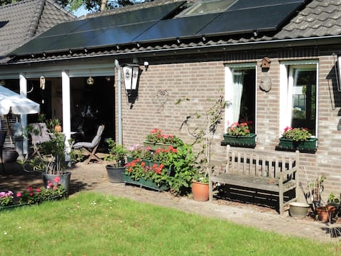 A cosy house in big English garden.