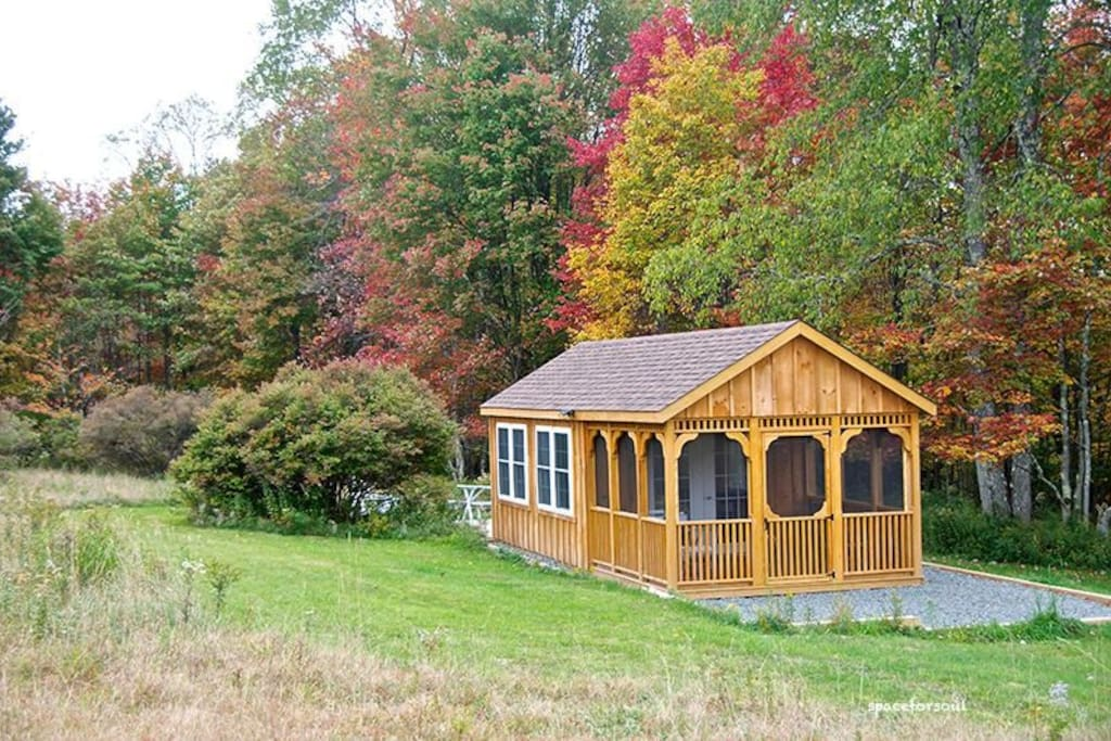 Fall color around the Cabin -- photo taken 10-1-15