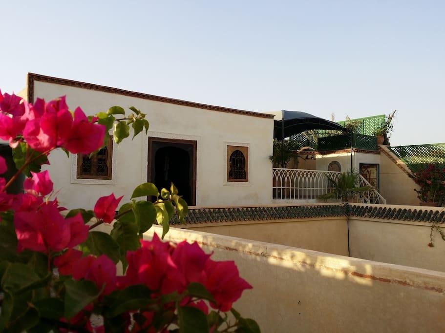 riad puchka marrakech avec une vrai piscine