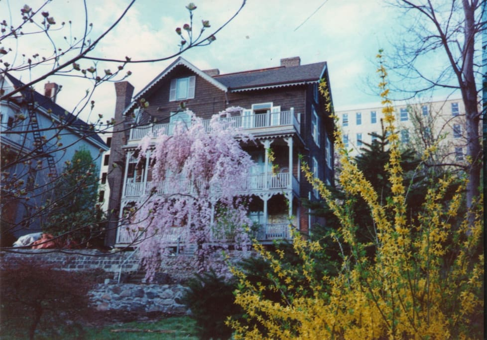 """Garden view of Magnolia House. When the famous playwright, Tennessee Williams came for drinks, dinner, and conversation in the 1970s, he clasped his hands, raised his eyes to heaven, and said, """"This house reminds me of the antebellum South, A Streetcar Named Desire, and Blanche DuBois!  I've come home to Bellereve!"""""""
