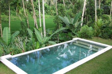 Authentic Ricefield Villa