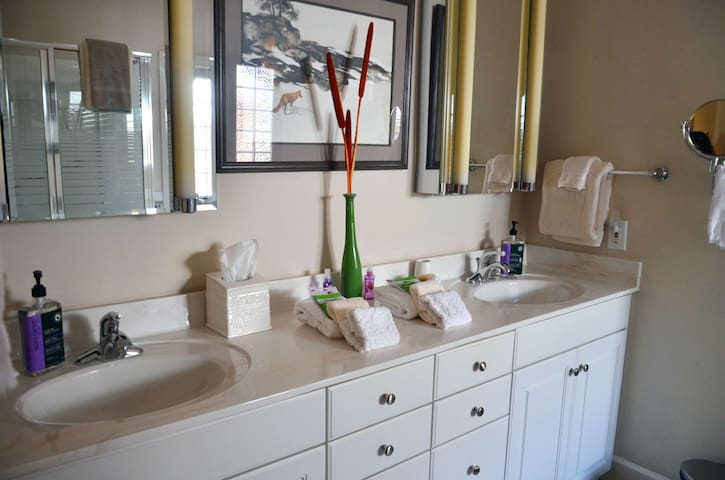 Master Bath Vanity with Individualized lighting on Double Vanities, including Wall Mounted Make-up Mirrors