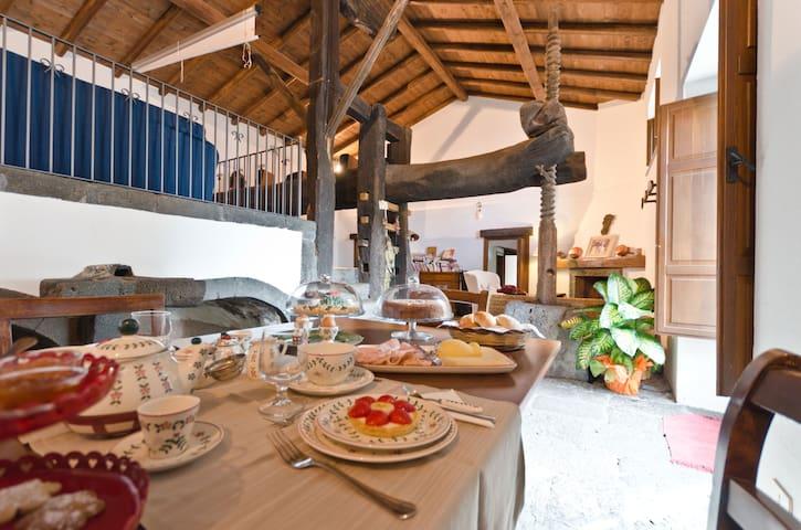 """La colazione nell'antico """"Palmento"""""""