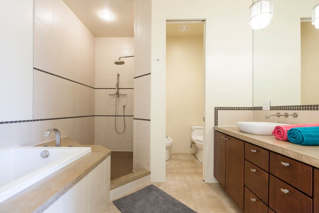 Jacuzzi bath, enormous shower with two showerheads, dual sink, private toilet, luxury features.