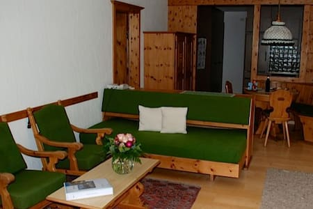Chesa La Furia - two room apartment - Pontresina