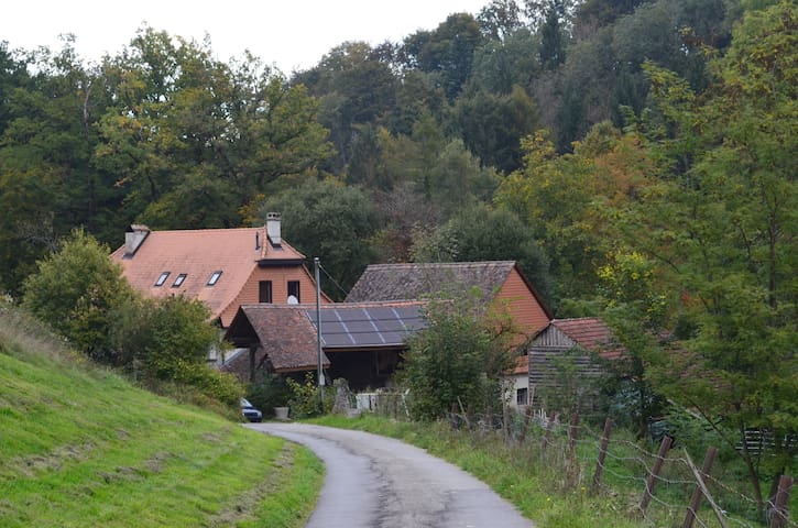 Moulin Pacot - Pailly - Byt