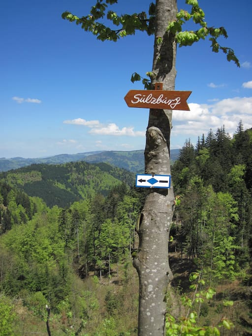 Sulzburg offers some of the finest hiking in the world.