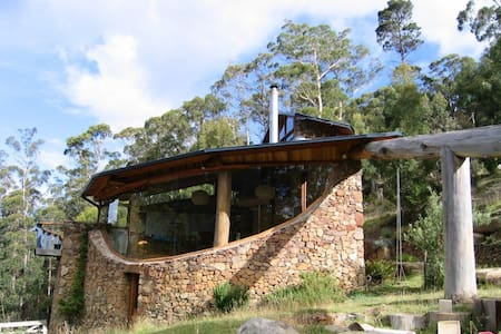 Architectural home in bush setting - Fern Tree - House