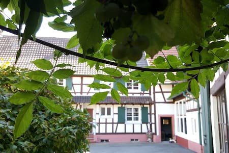 APPARTMENT STRASBOURG BADEN-BADEN - Gries - Huis