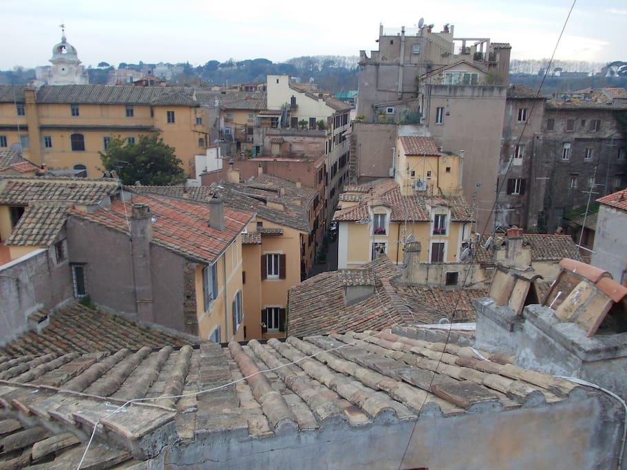 The roofs of Old Rome, with trastevere in the distance.