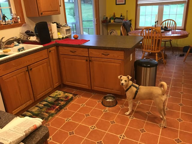 Kitchen you can use. That is Miss Holly.