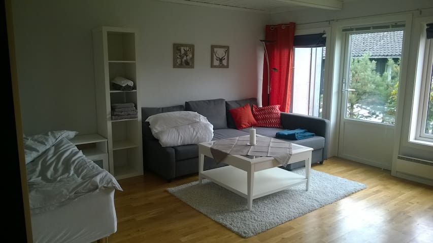 Small apartment in Kongsberg - Kongsberg - Wohnung