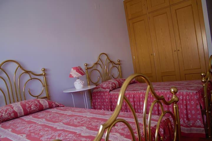 Habitación doble con baño propio. - Ávila - Lakás