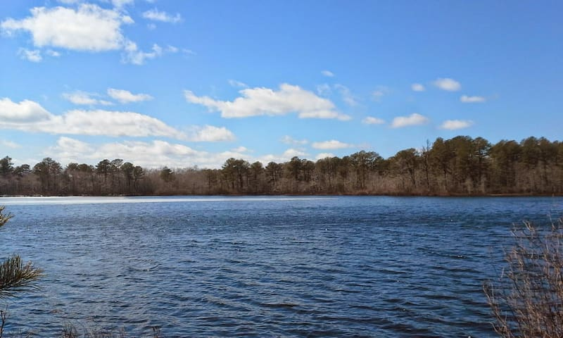 Located in the most rural area on Long Island, surrounded by preserve land. No distractions.