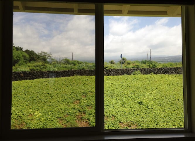 "Second bedroom view is ""mauka"" (up the mountain)"