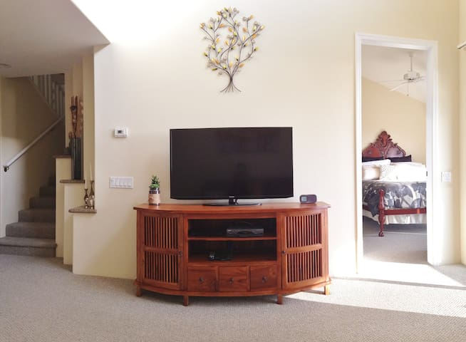 The living room has all you need for digital entertainment, flatscreen tv, dvd player, 100's of cable channels and wifi for Netflix. The unassuming speakers on the credenza play your music and can be heard throughout the entire apartment if wanted.
