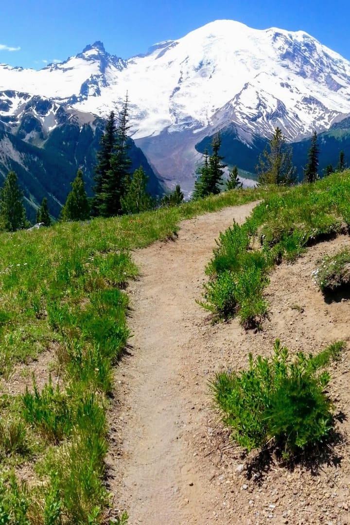 Accessible 3-mile walk near Mt. Rainier