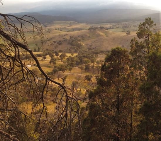A train trip on country land - NSW - Train