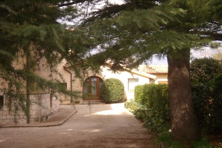 La vista su Assisi