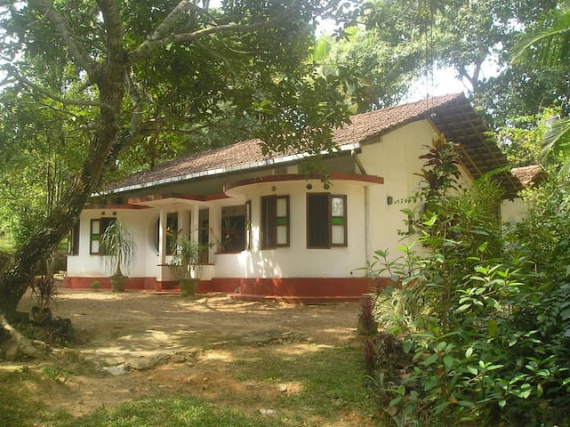 A Peaceful and Beautiful Retreat - Hikkaduwa - Rumah