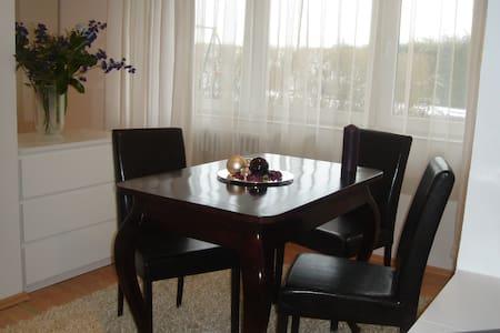 ELEGANTES APPARTEMENT auf Zeit (W5) - Dillingen/Saar - Apartment - 2