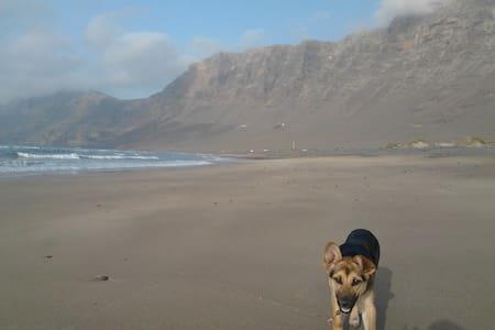 calma y relax,cerca del mar - Flat