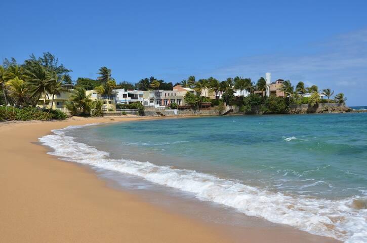 Brenas Beach Villa 8 BR Estate - Vega Alta - House