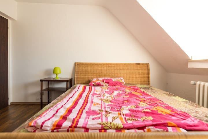2 room flat near fair trade Cologne - Köln - Apartment