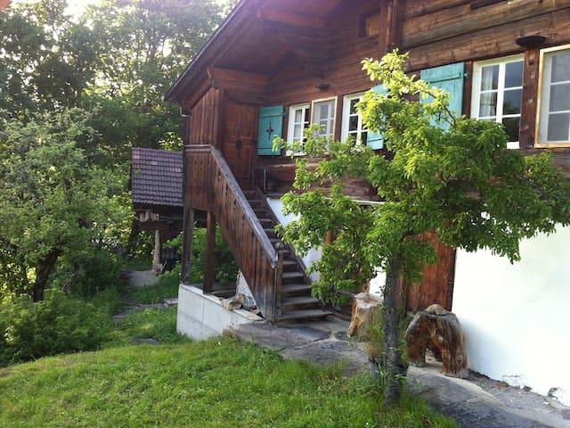 Ferienhaus Blatti - Hasliberg - Wohnung