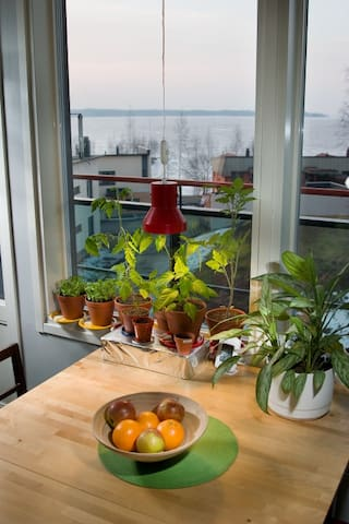Short walk to the city center - studio apartment - Tampere - Departamento