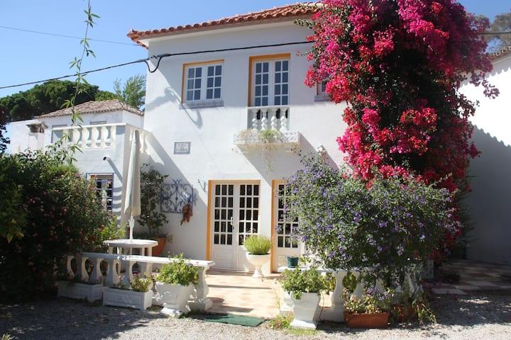 Country villa close to the beach