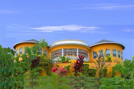 Palm Trees - White House - Villa
