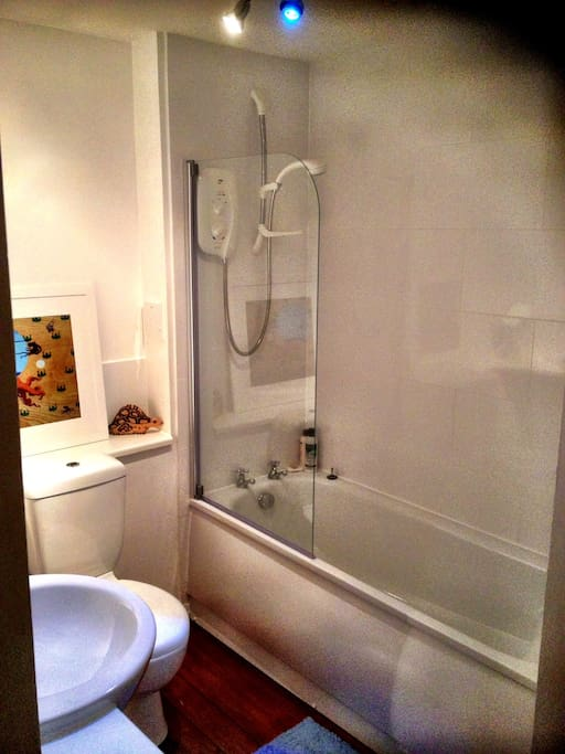 Bathroom (renovated autumn 2012) with bath & shower