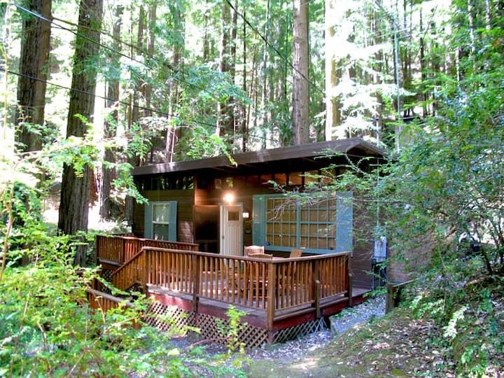 CAZ HEAVEN: Pvt Hillside Hot Tub@Redwoods
