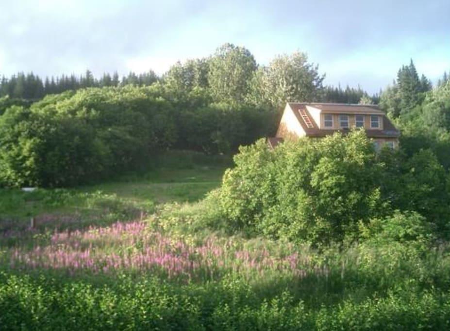 The Bear's Den Lodge at Alaska Adventure Cabins.