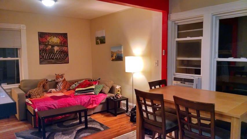 Comfortable, Social-friendly Apt - Boston - Appartement