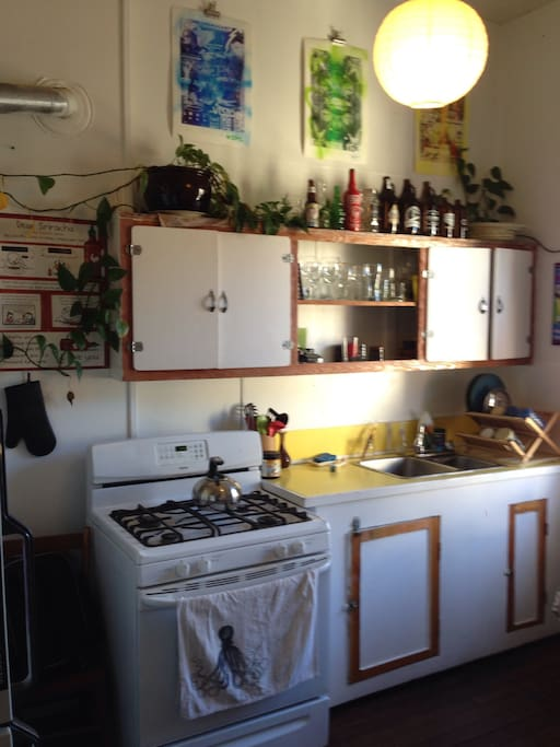 Kitchen! Gas stove. Full size fridge. Lots of room.