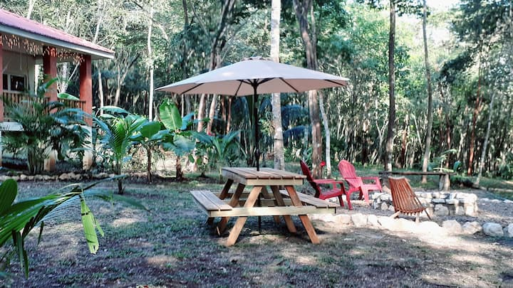 B&B jungle cabana #2, car rental, AC, outdoor gril