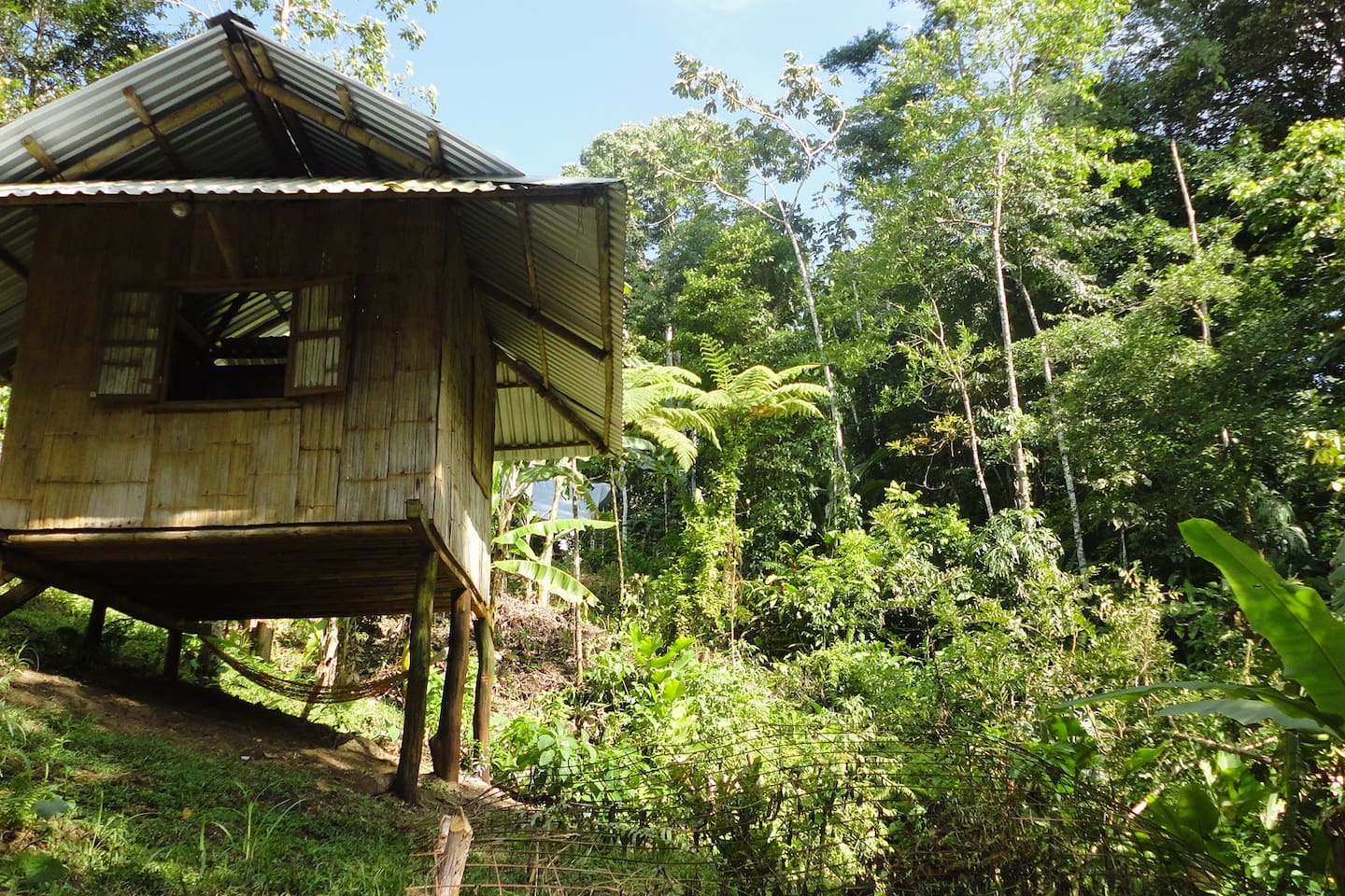 Cabina Túcan is perched high above one of many natural springs on the farm, a pristine jungle wildlife corridor and a personal Food Forest.