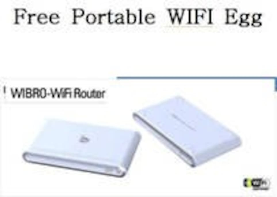 Free portable WIFI egg(up to 6 people to be used simultaneously)